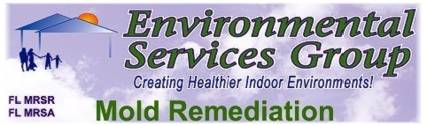 Environmental Services Group Florida